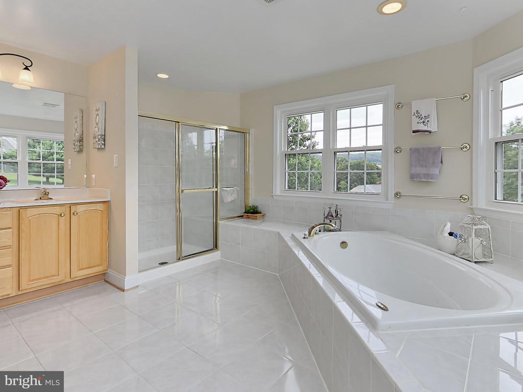 Master Bath - 34900 DELIA CT, ROUND HILL