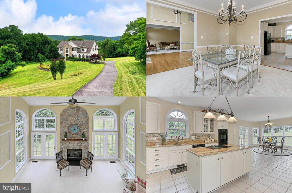 Stunning 4 BR, 4.5 BA luxury home on 5.56 acres! - 34900 DELIA CT, ROUND HILL