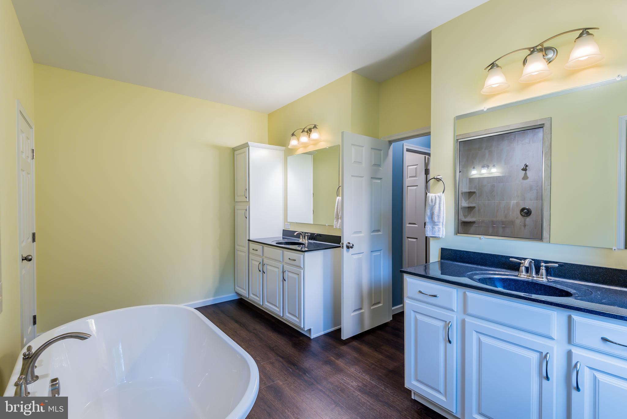Double vanities in master bathroom!