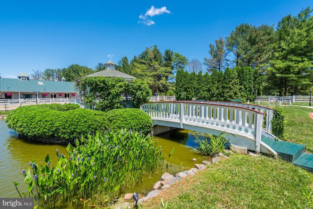 Foot Bridge & Pond - 4309 SUNDOWN RD, GAITHERSBURG