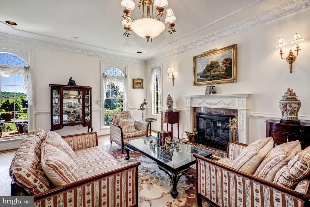 Formal Living Rm & Fireplace - 4309 SUNDOWN RD, GAITHERSBURG