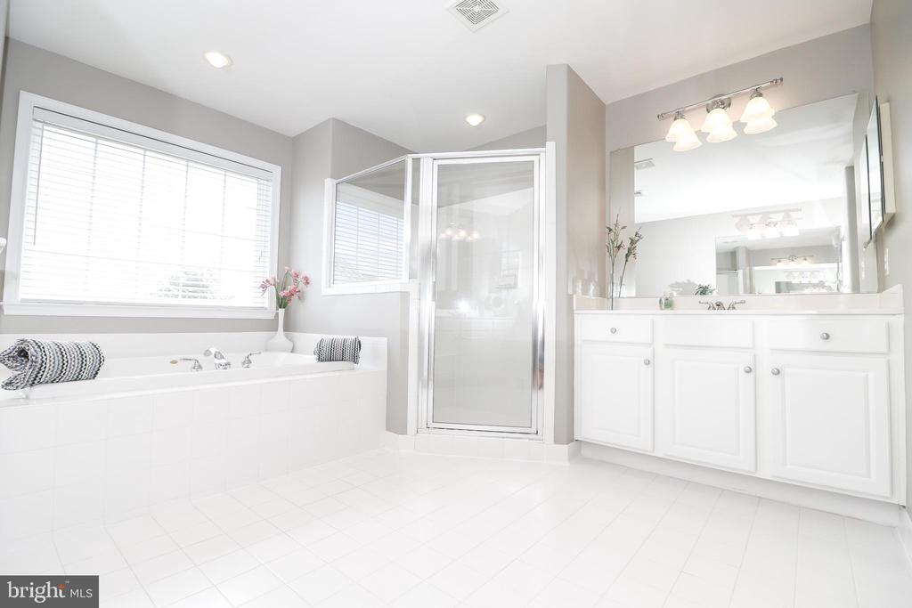 Oasis Master Bathroom - 25189 BLACKSTONE CT, CHANTILLY