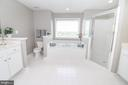 Master Bathroom Dual Vanity & Sep Tub/Shower - 25189 BLACKSTONE CT, CHANTILLY