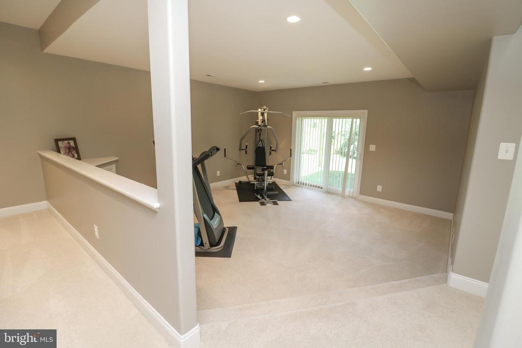 Basement Recreation Room/Great Room - 25189 BLACKSTONE CT, CHANTILLY