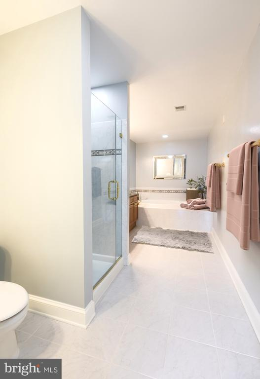 Separate shower and soaking tub - 1555 N COLONIAL TER #501, ARLINGTON