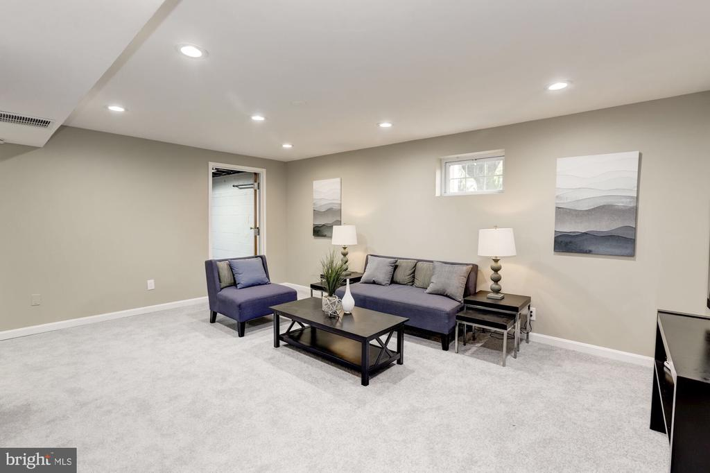 Rec room with brand new carpet - 1719 OLNEY RD, FALLS CHURCH