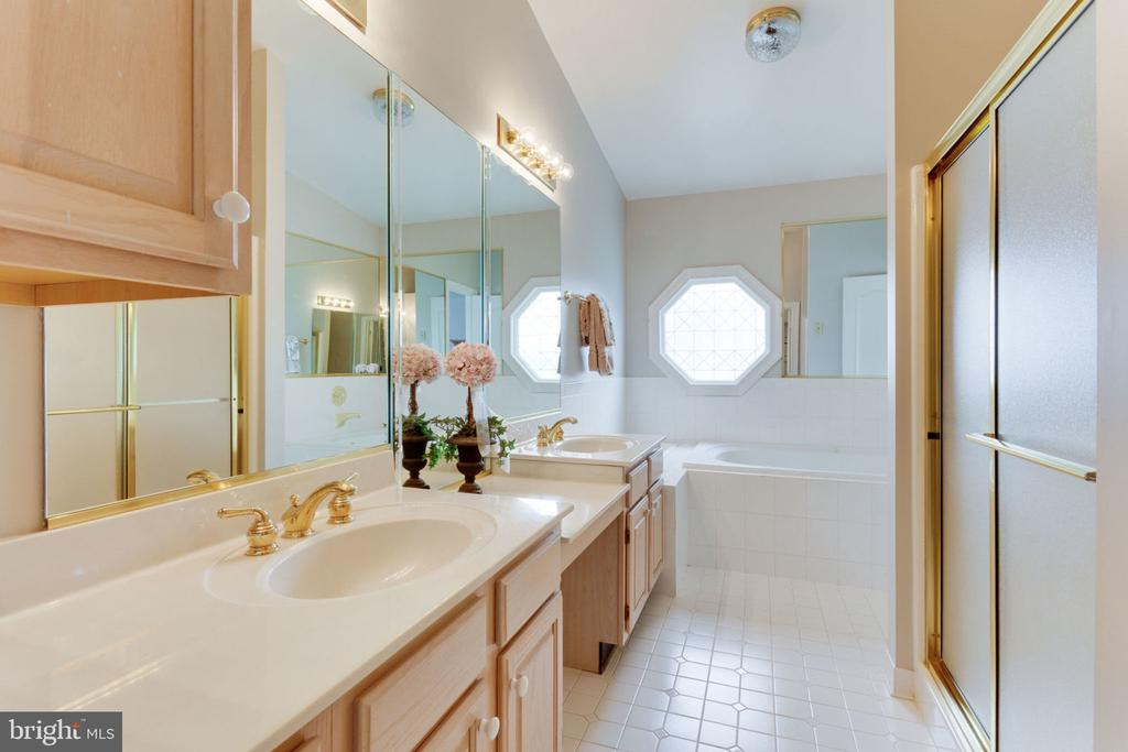 Sunk in Tub & separate shower - 8178 MADRILLON CT, VIENNA