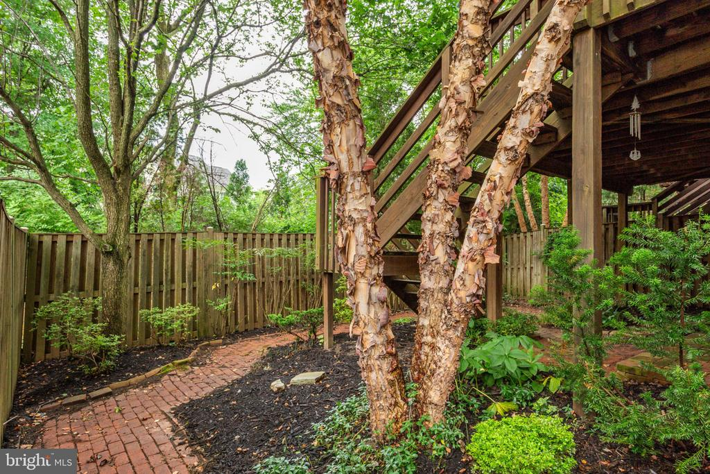 Beautiful landscaping. Home backs to Trees. - 8178 MADRILLON CT, VIENNA