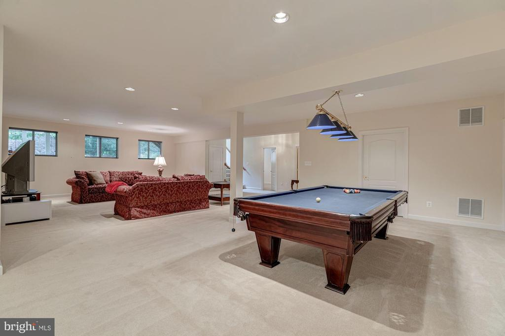 Expansive Lower Level - 10810 TRADEWIND DR, OAKTON