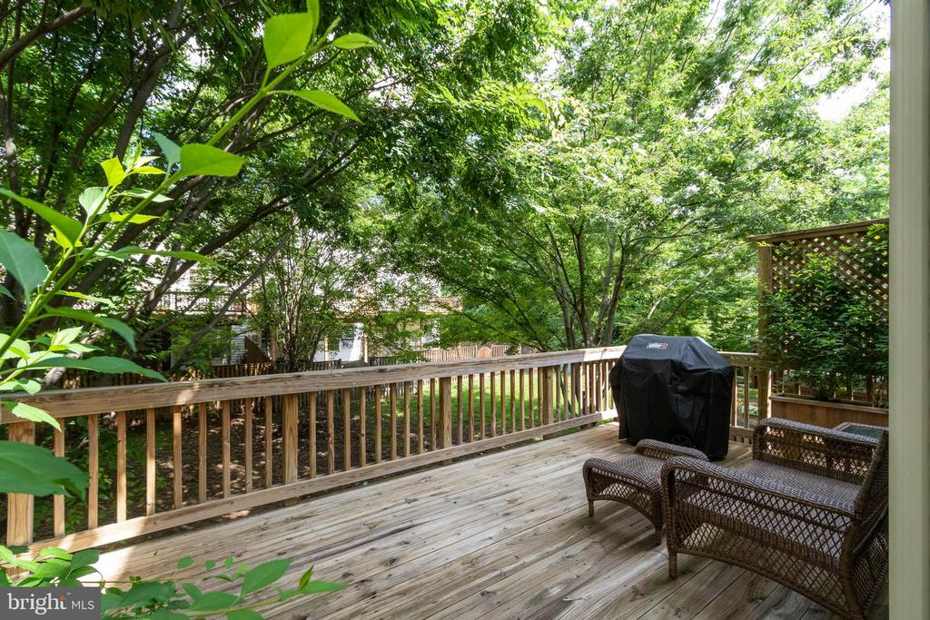 Deck Overlooks Common - 20385 FARMGATE TER, ASHBURN