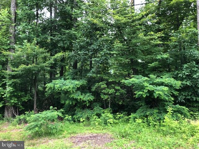 Land for Sale at Graves Mill, Virginia 22721 United States