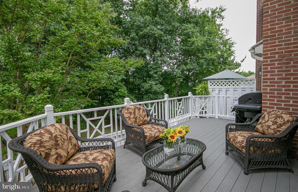 entertain on the quiet deck that backs to trees - 2185 WOLFTRAP CT, VIENNA