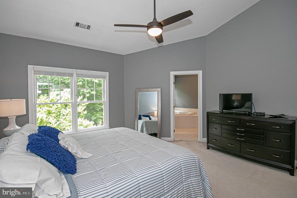Huge master bedroom - 2185 WOLFTRAP CT, VIENNA