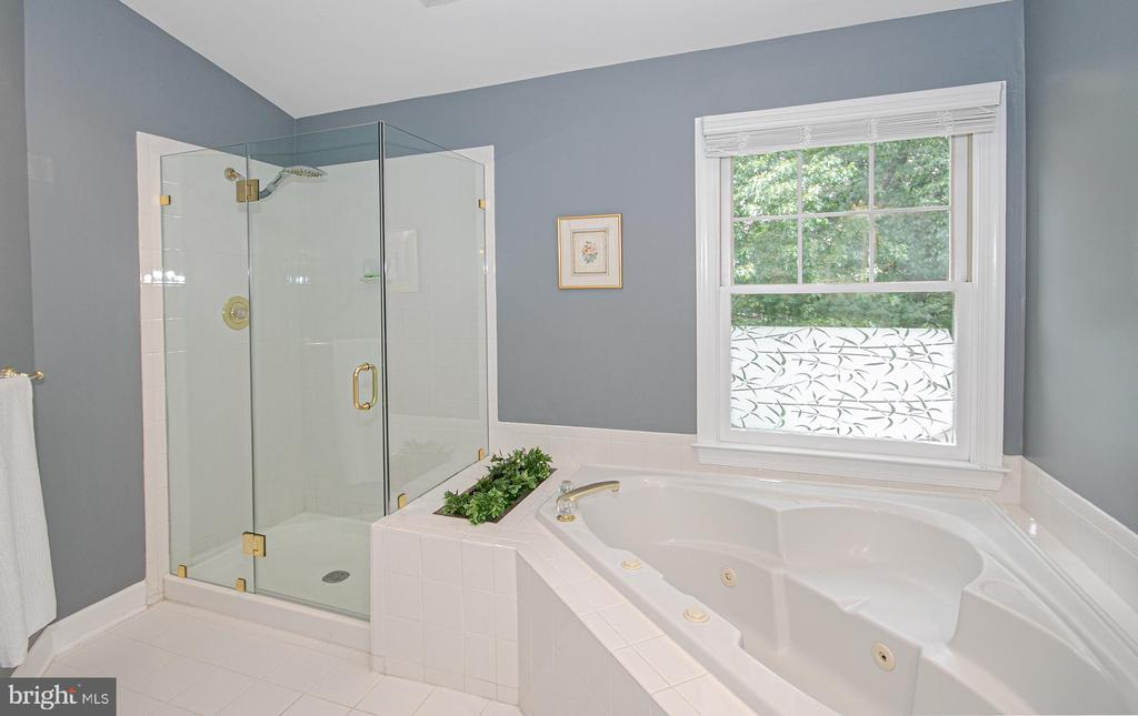 soaking tub and new glass shower door - 2185 WOLFTRAP CT, VIENNA