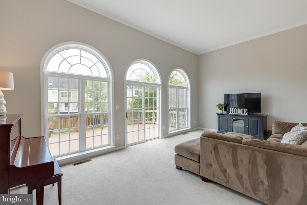Gorgeous windows with a view - 24612 NETTLE MILL SQ, ALDIE