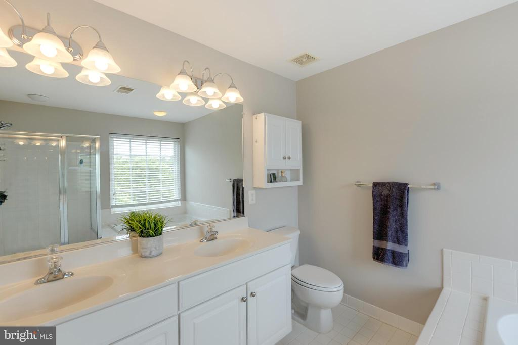 Attached Master Bathroom - 24612 NETTLE MILL SQ, ALDIE