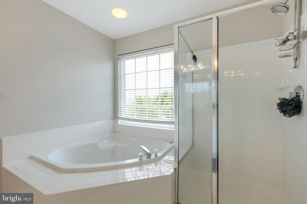 Master Soaking tub and stand up shower - 24612 NETTLE MILL SQ, ALDIE
