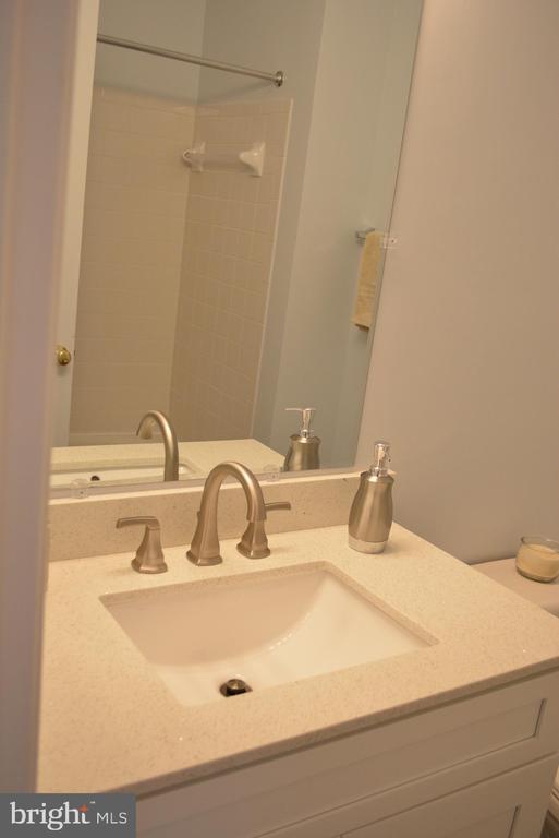Lower Bathroom - 43809 LEES MILL SQ, LEESBURG