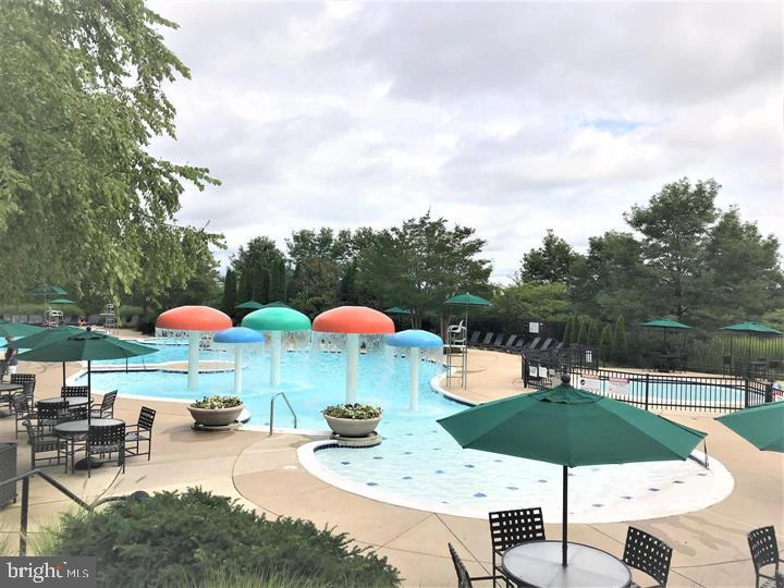 Community Outdoor Pool - 43809 LEES MILL SQ, LEESBURG