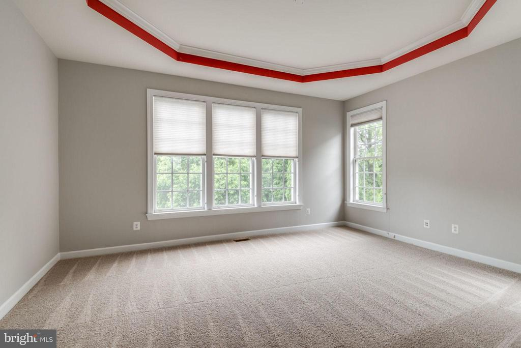 Main level master bedroom w/ tray ceiling - 43725 COLLETT MILL CT, LEESBURG