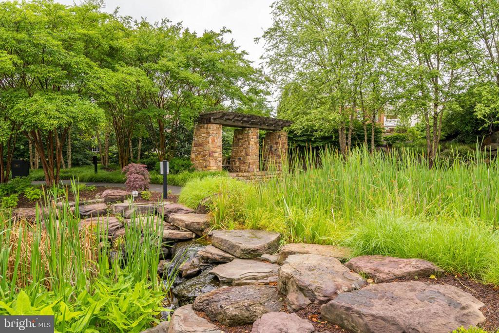 Enjoy the varied plants and wildlife - 43725 COLLETT MILL CT, LEESBURG
