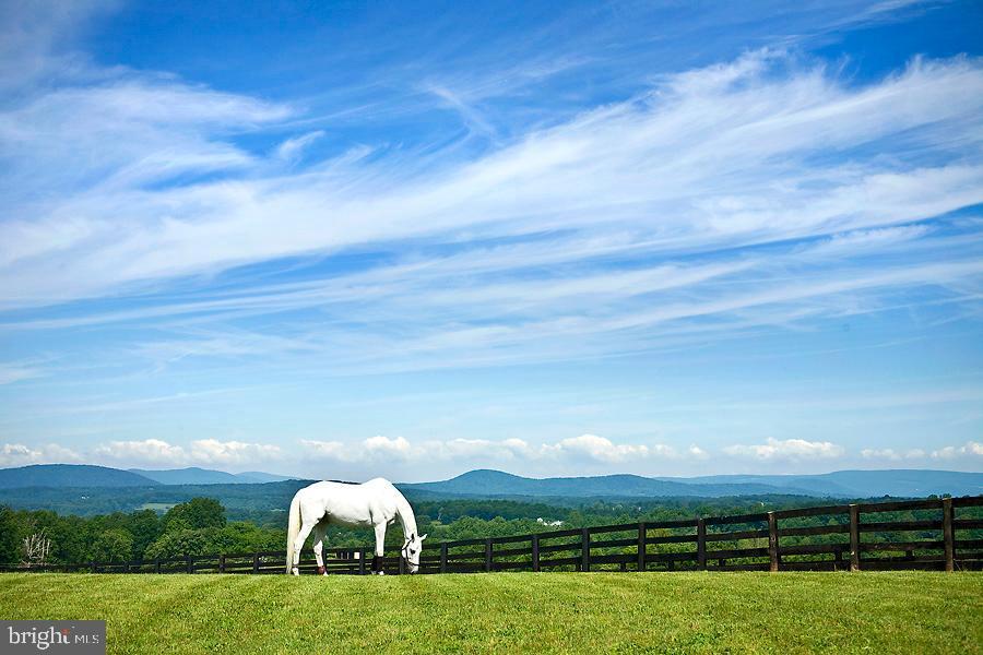 5307  JAMES MADISON, The Plains, Virginia