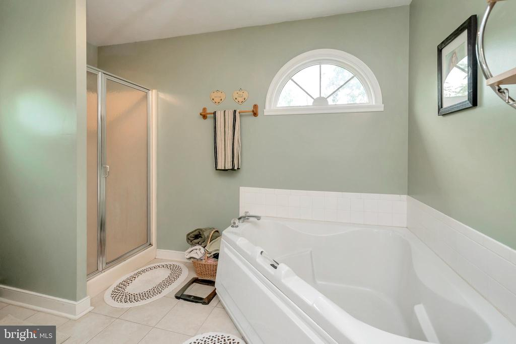 Master Sep Tub & Shower - 7329 CLOVERHILL RD, SPOTSYLVANIA