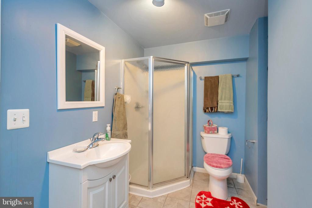 Lower Level Bath - 7329 CLOVERHILL RD, SPOTSYLVANIA