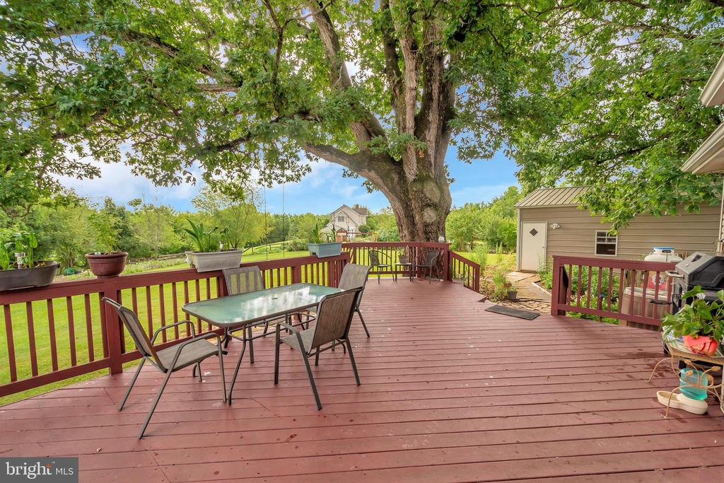 Family Size Gathering Deck & a 300yr old tree - 7329 CLOVERHILL RD, SPOTSYLVANIA