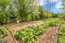 Gardening Time!! - 7329 CLOVERHILL RD, SPOTSYLVANIA