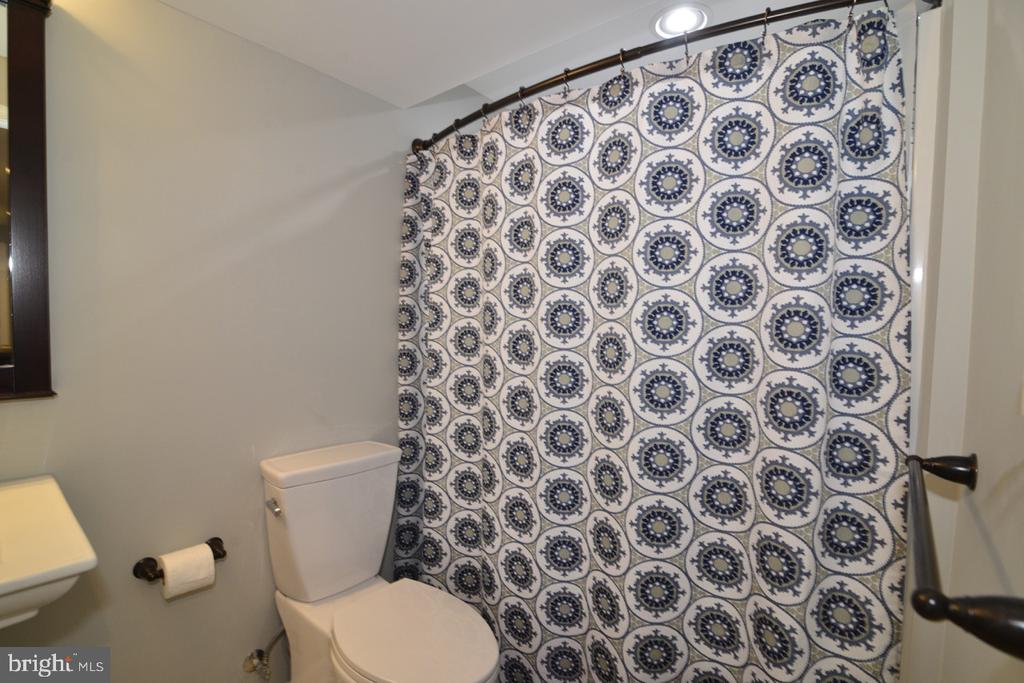 Lower Level l Bath - 36071 WELLAND DR, ROUND HILL