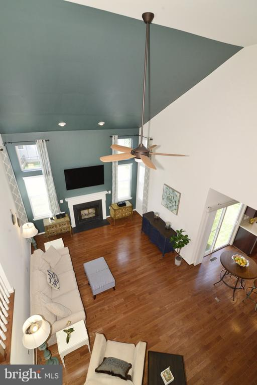 View from Above - 36071 WELLAND DR, ROUND HILL