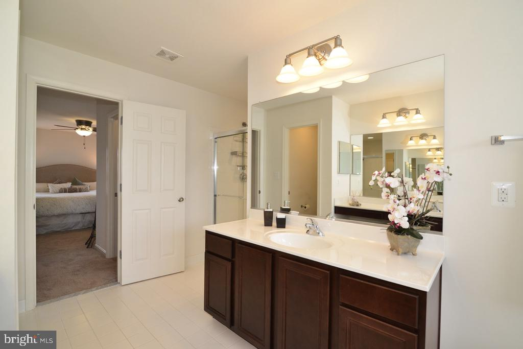 Master Bath - 36071 WELLAND DR, ROUND HILL