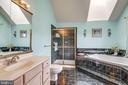 Spacious master bath w/ sky light - 43755 CRANE CT, ASHBURN