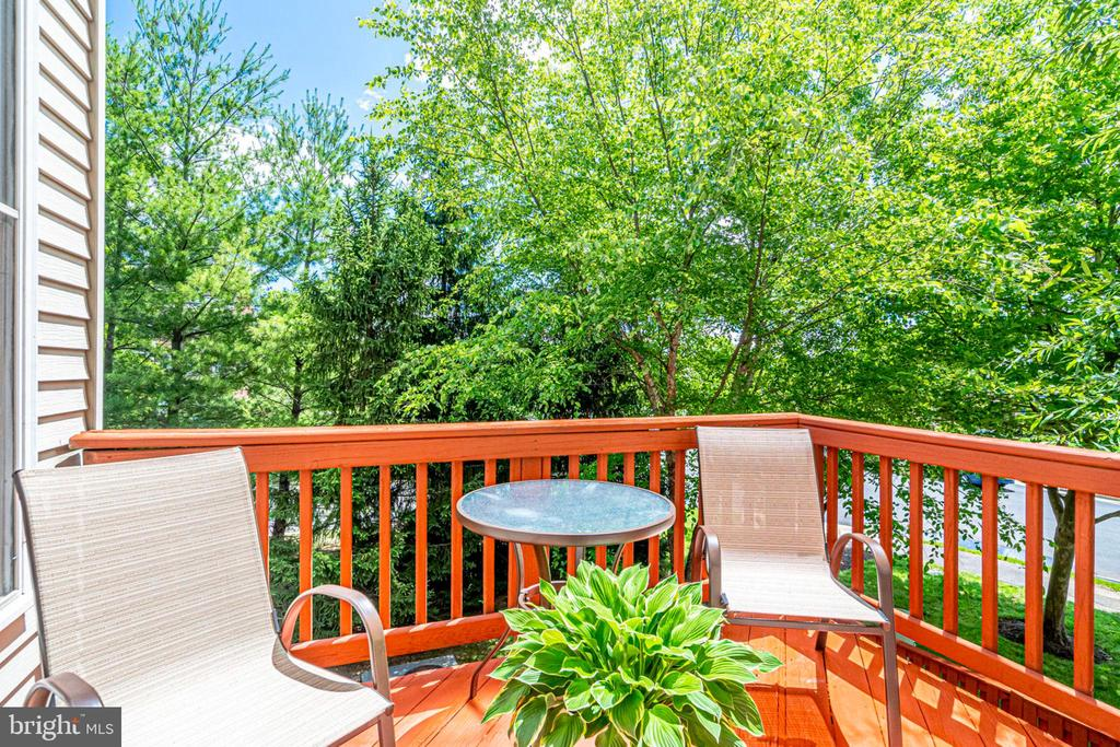 Deck backing to open space - 5500 JOWETT CT, ALEXANDRIA