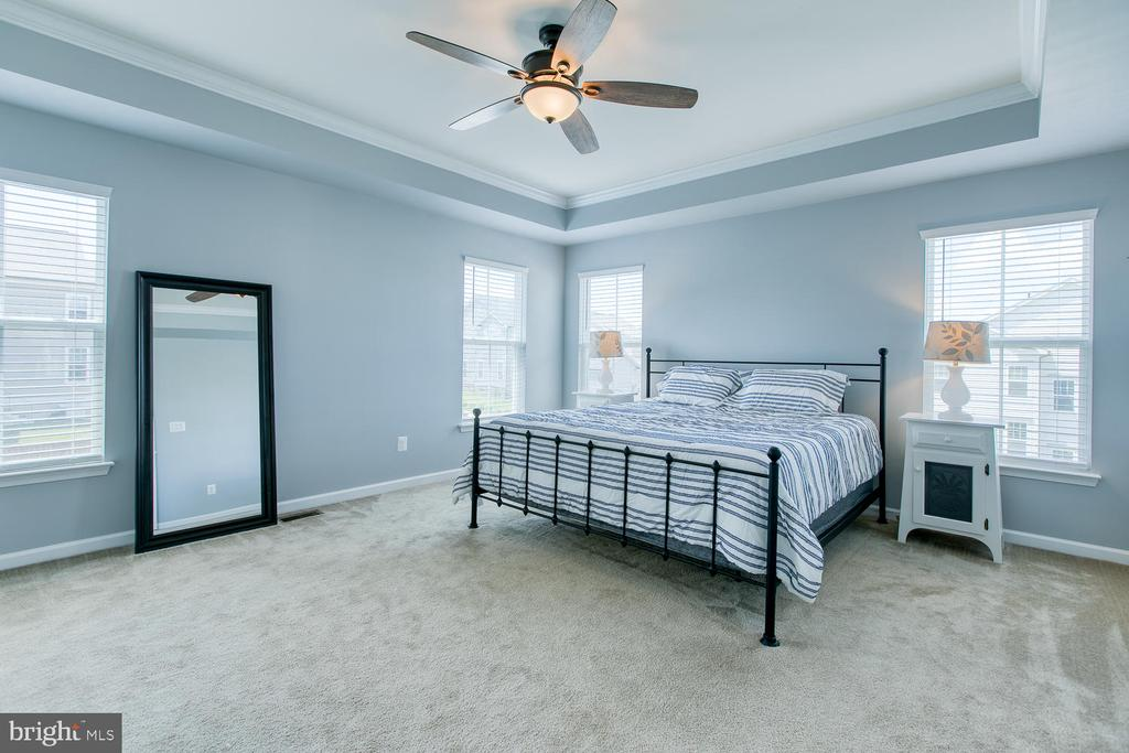 Luxurious master suite with tray ceiling - 301 PEAR BLOSSOM RD, STAFFORD