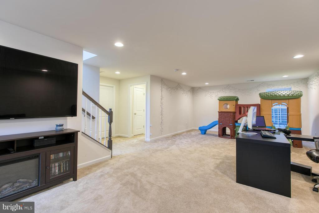 Basement - 301 PEAR BLOSSOM RD, STAFFORD