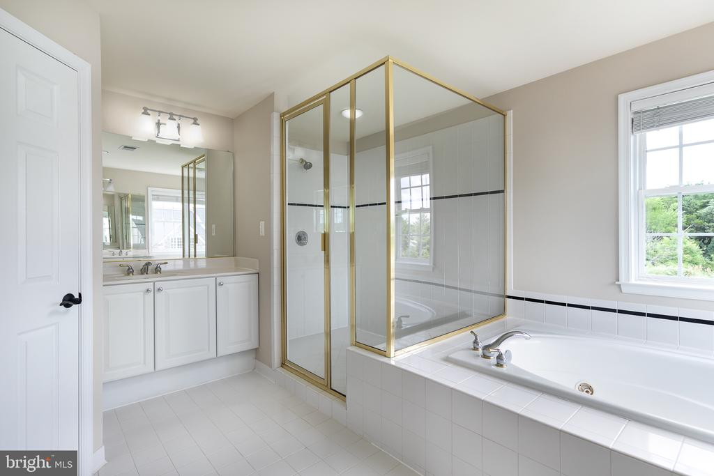 Master Bath Separate Shower & Jacuzzi Jetted Tub - 21109 CARTHAGENA CT, ASHBURN