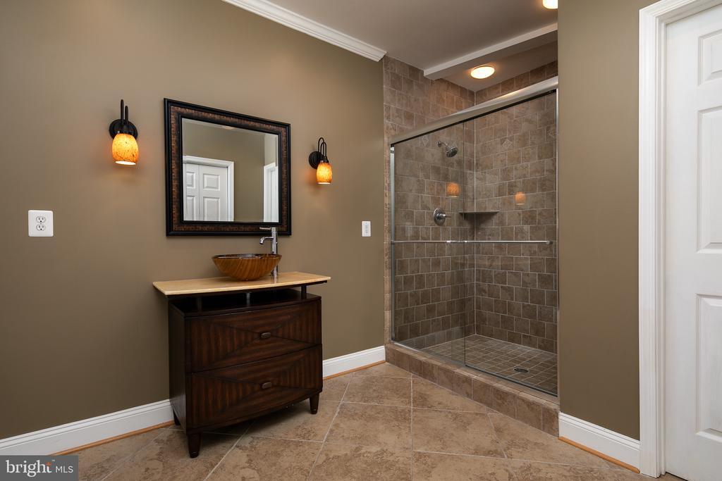 Pool Full Bath Access from Patio - 21109 CARTHAGENA CT, ASHBURN