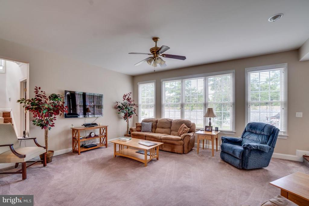 Plenty of Windows for Tons of Natural Light - 12274 TIDESWELL MILL CT, WOODBRIDGE