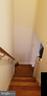 Main Staircase - 3325 AMES ST NE, WASHINGTON