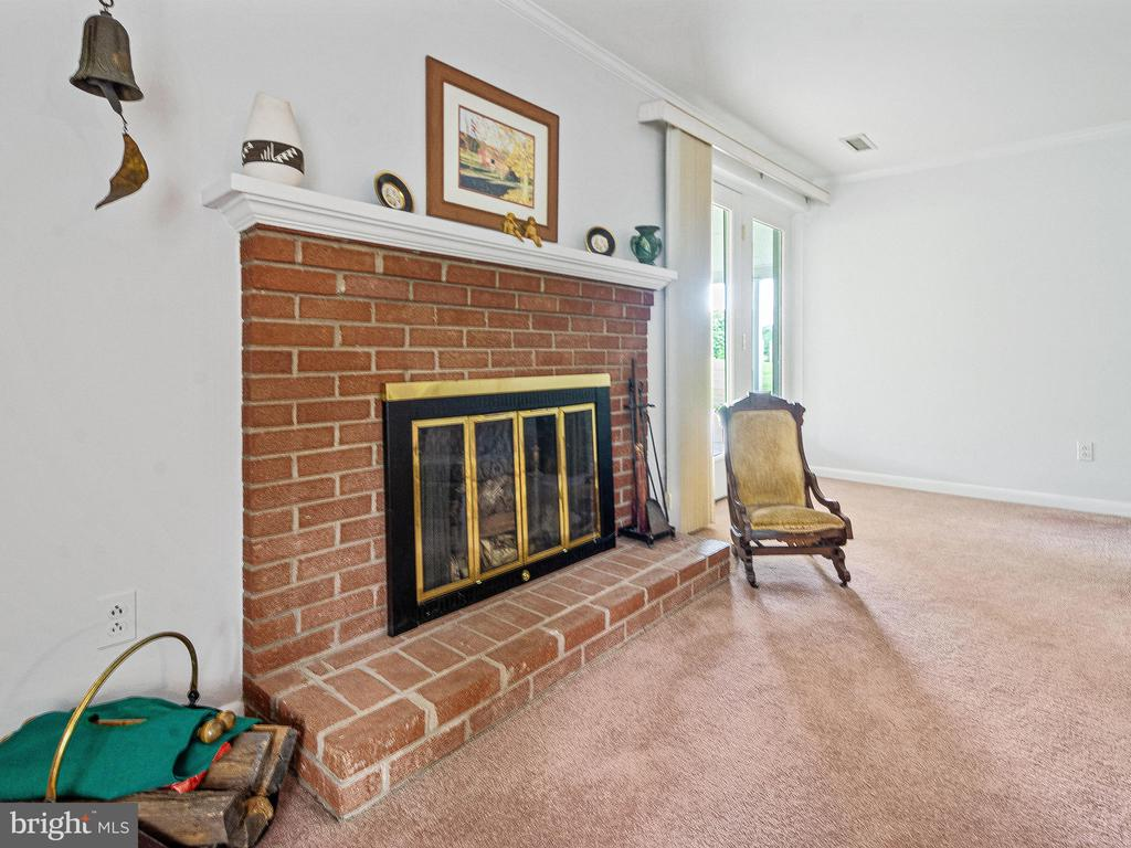 Wood Fireplace - 4315 ALDIE RD, CATHARPIN