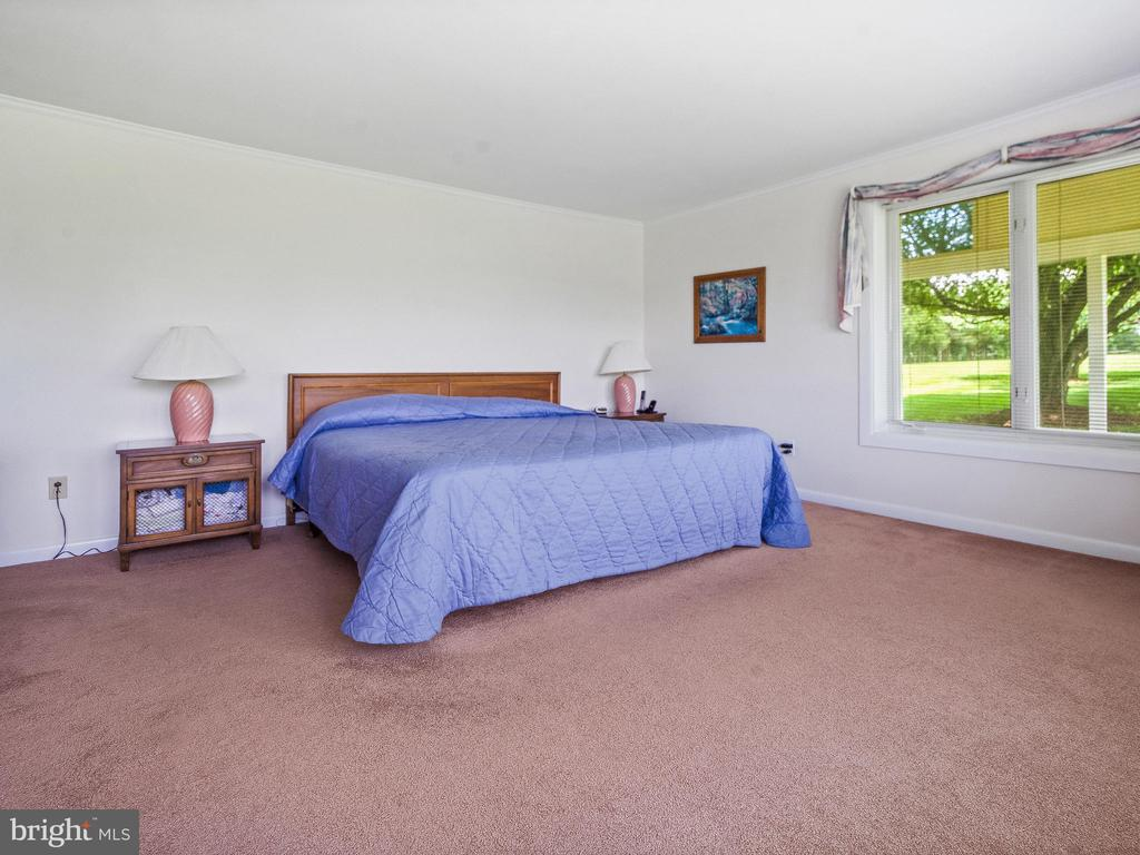 Master Bedroom - 4315 ALDIE RD, CATHARPIN