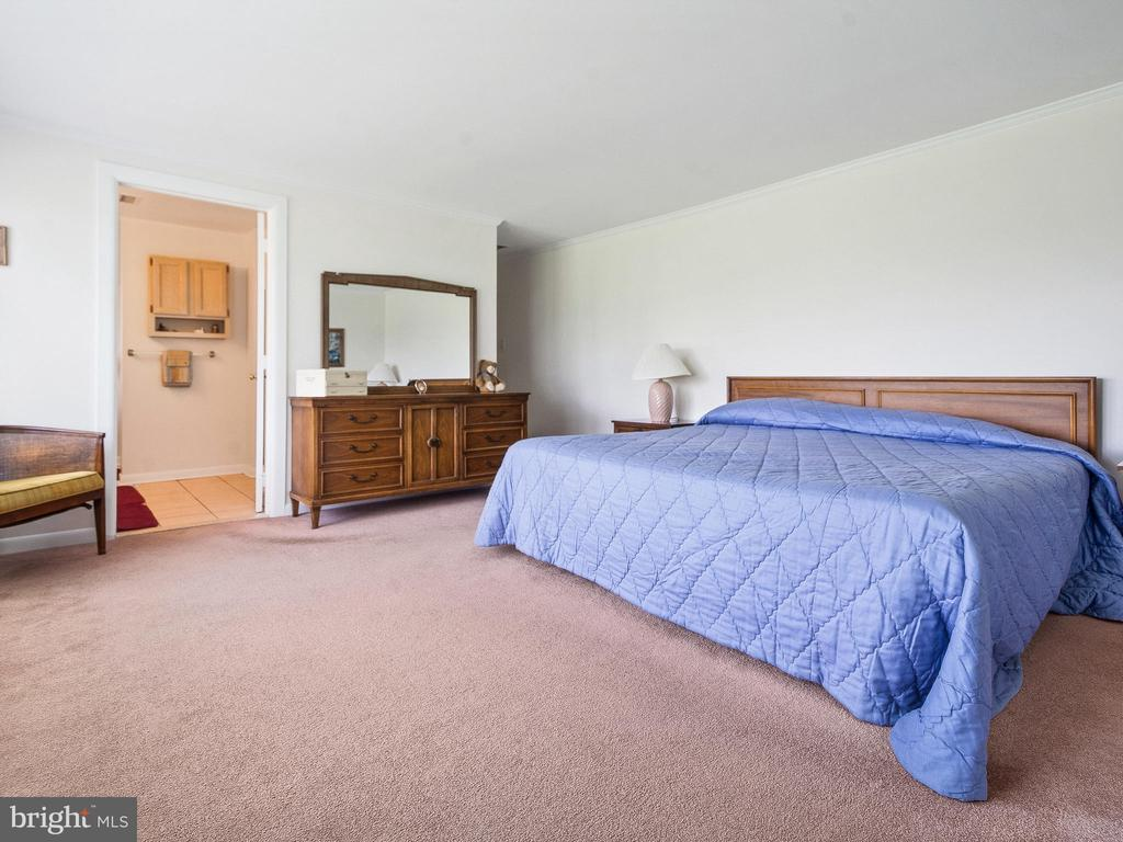 Large Master Bedroom - 4315 ALDIE RD, CATHARPIN