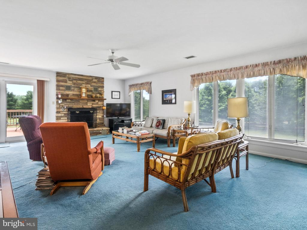 Naturally Bright Family Room - 4315 ALDIE RD, CATHARPIN