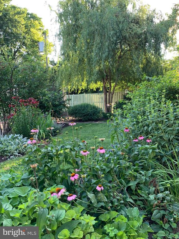 Gardens Baywise Cert completed by a Mstr Gardener - 203 ROCKWELL TER, FREDERICK