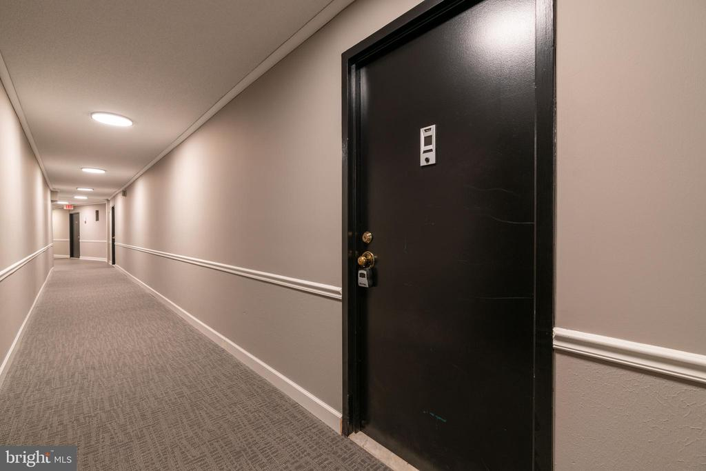 Updated hallway - 2500 N VAN DORN ST #422, ALEXANDRIA