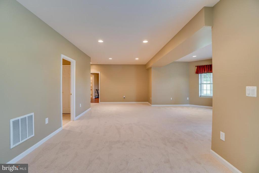 Brand new carpet in the whole basement! - 38 JANNEY LN, FREDERICKSBURG