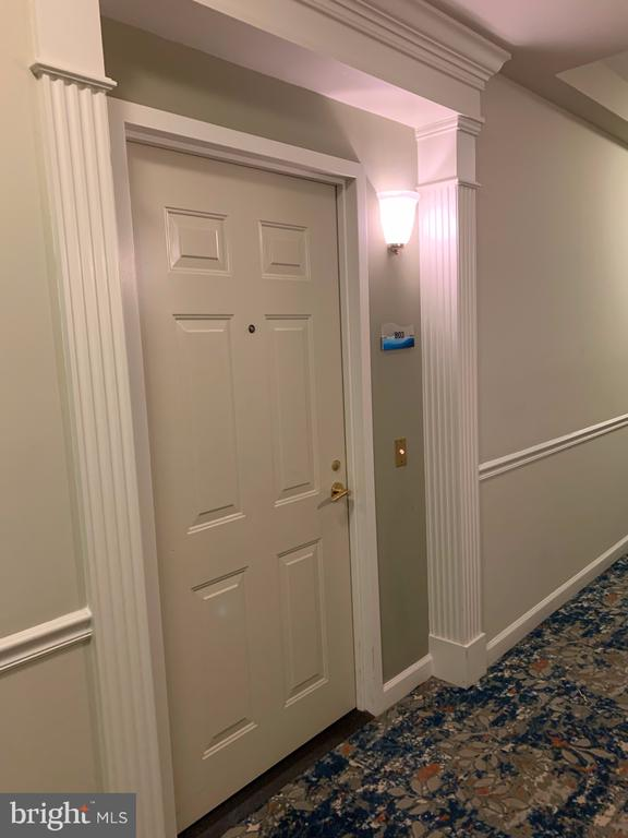 Notice wood trim around condo front door! - 19375 CYPRESS RIDGE TER #803, LEESBURG