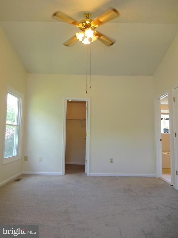 MBR with Cathedral Ceiling and  Walk-in Closet - 8232 EMORY GROVE RD, GAITHERSBURG